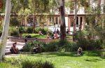 University of Canberra Webinar & Scholarship