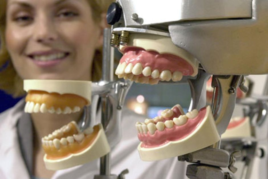 Dentistry majors for school