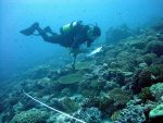 Earth Day:  JCU posts concerns for protection of more, large marine wilderness areas