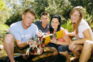 Griffith students-crayfish environment