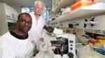 Griffith University – Malaria Vaccine Project Showcase