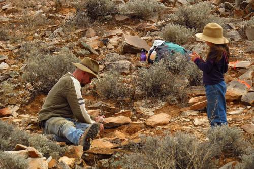 Flinders University Ecologist