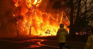 Image from University Updates on Australian Bushfires